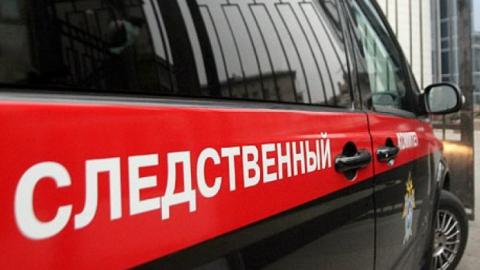 По факту убийства многодетной матери в Квасниковке возбуждено уголовное дело