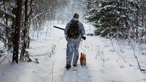 Во время охоты на лося саратовец ранил из карабина знакомого