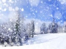 На неделе Саратов ожидают снег, метели и гололед