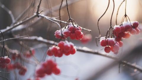 Саратовцам обещают мороз и небольшой снег