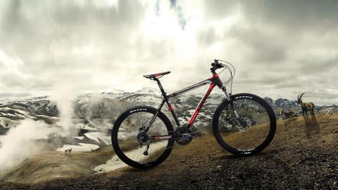 В Петровске мужчина украл велосипед