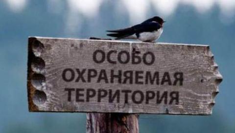 Прокуратура возвратила незаконно отданный участок охраняемой территории