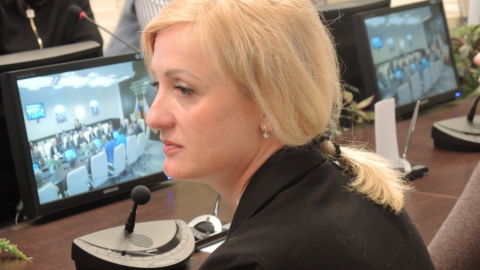 Сопредседателем консультативного совета избиркома стала Мария Липчанская