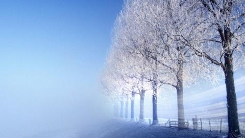 Саратовцам обещают снег и до -12 градусов