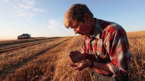 Саратовские фермеры получат льготные кредиты