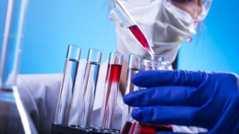 Саратовские ученые создали лекарство от рака на основе ядовитого растения