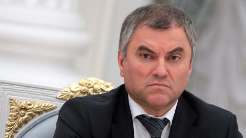 Вячеслав Володин встретится с депутатами  в Ершове и Татищево