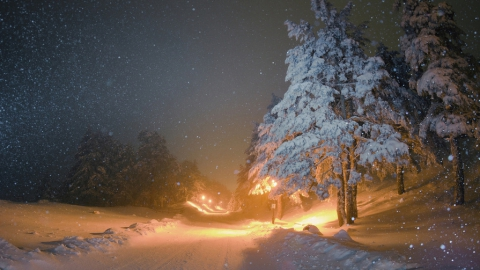Саратовцам обещают снег на весь день
