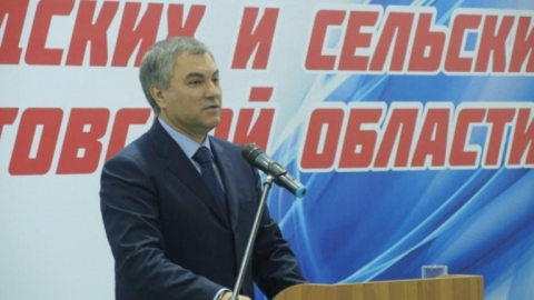 Депутат из Лысогорского района выразила благодарность Володину за помощь