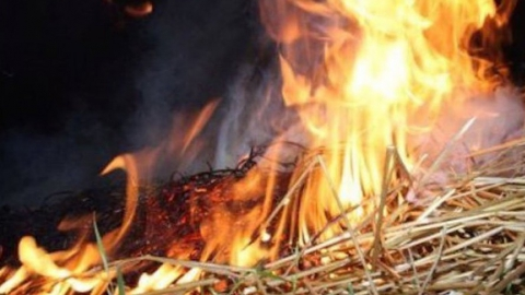Под Саратовом сгорело 10 тонн соломы