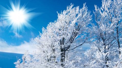 Саратовцам обещают небольшой снег и до девяти градусов мороза