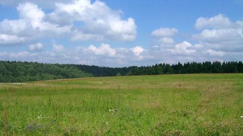 Минтранс выкупит землю под дорогу к новому аэропорту в Сабуровке