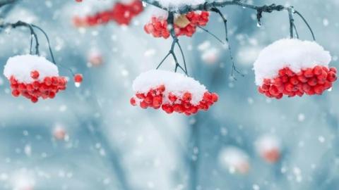 Саратовцам обещают снег и -9 градусов днем