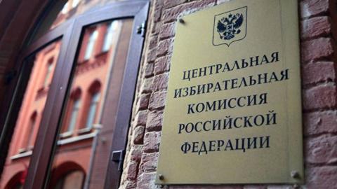 Члены ЦИК России встретятся с губернатором Валерием Радаевым и омбудсменом Татьяной Журик