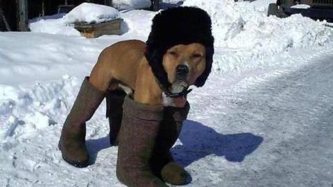 Саратовцев ждет морозная неделя без осадков