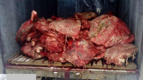 В Саратове уничтожили партию опасной говядины
