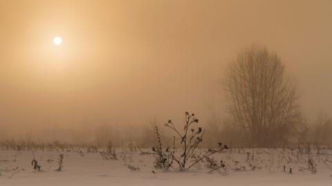 Жителей Саратова, Балаково и Вольска предупреждают о плохих погодных условиях