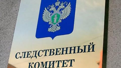 В Балаково адвокат присвоила материнский капитал подельницы