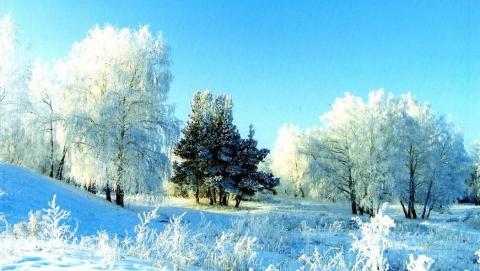 Саратовцам обещают ясный и морозный день