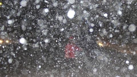 Молодая девушка из Энгельса насмерть замерзла на улице