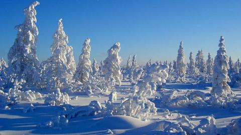 В Саратове будет солнечно и 19 градусов мороза