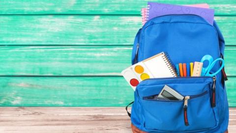 Завтра в саратовских школах снова отменят занятия