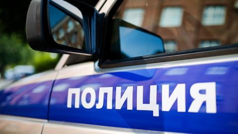 Полицейские задержали подозреваемых в восьми кражах