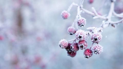В первый день весны саратовцам обещают до 21 градуса мороза