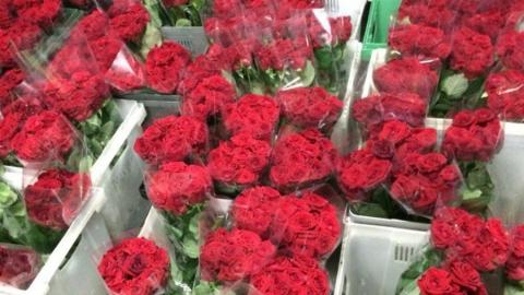 "Салон ""Флорус"" ждет саратовцев за цветами к 8 марта"
