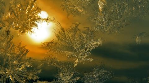 Саратовцев ждет морозный и солнечный день