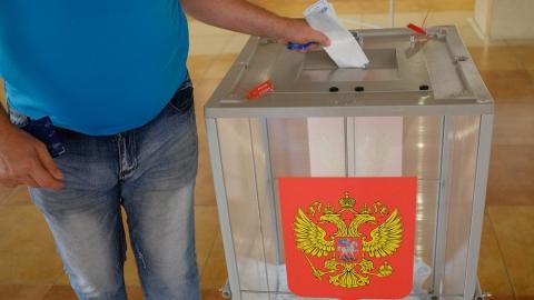 Избирком закупит дополнительные сто прозрачных урн для голосования
