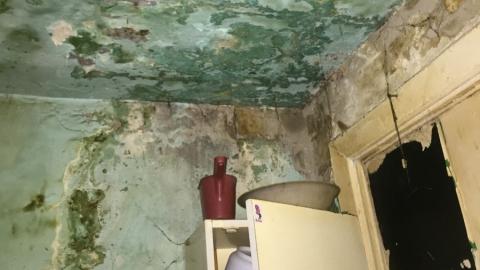 Жители дома на Огородной жалуются на антисанитарию, мышей и обваливающийся кирпич