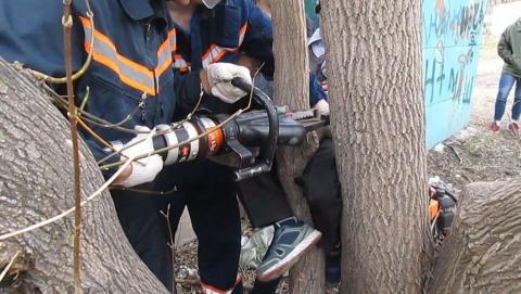 Спасатели нашли заблудившегося мужчину с застрявшей между деревьев ногой