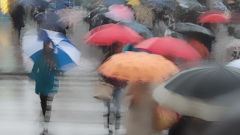 Сегодня в Саратове возможен дождь со снегом