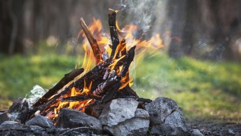 Саратовцам напоминают о правилах пожарной безопасности весной