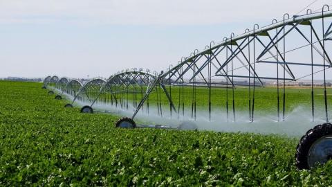 """""""Саратовмелиоводхоз"""" планирует подать 250 миллионов кубометров воды на нужды сельского хозяйства"""