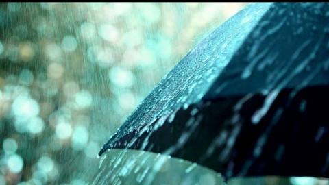 Сегодня синоптики обещают дождливую погоду