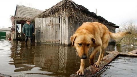 Губернатор объявил режим повышенной готовности к паводку