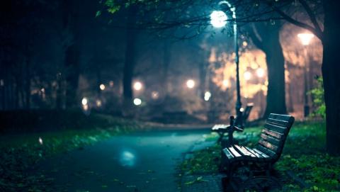 Двое молодых людей сломали три фонаря впарке