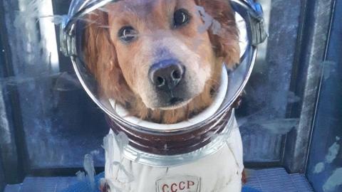 В День космонавтики саратовцев ждет похолодание и усиление ветра