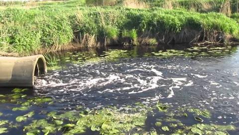 Жители Красного Кута жалуются на сброс сточных вод в реку