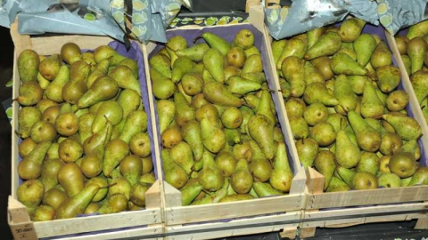 """На рынке """"Привоз"""" изъято 240 килограммов польских груш"""