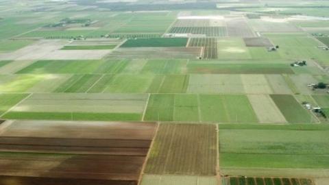 Администрация вернула 32 земельных участка
