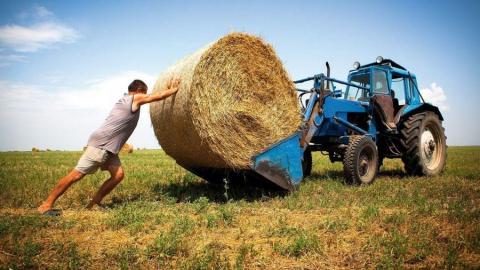 Каждый третий подавший заявку на получение гранта фермер не прошёл отбор