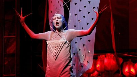 """Саратовцев приглашают на оперу """"Волшебная флейта"""" с масонской символикой"""