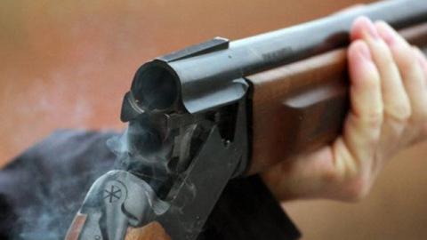 В поселке Рейник обстрелян дом 35-летней женщины