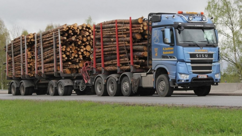В Саратовскую область не пустили 18 тонн леса из Казахстана