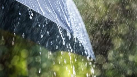 Сегодня синоптики обещают небольшой дождь