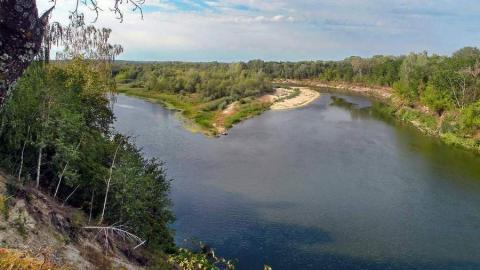На большинстве рек Саратовской области наблюдался спад уровней воды