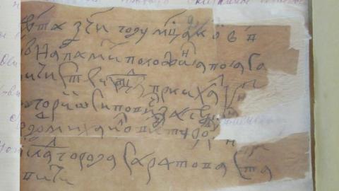 В Саратове публике впервые показали документ об основании города